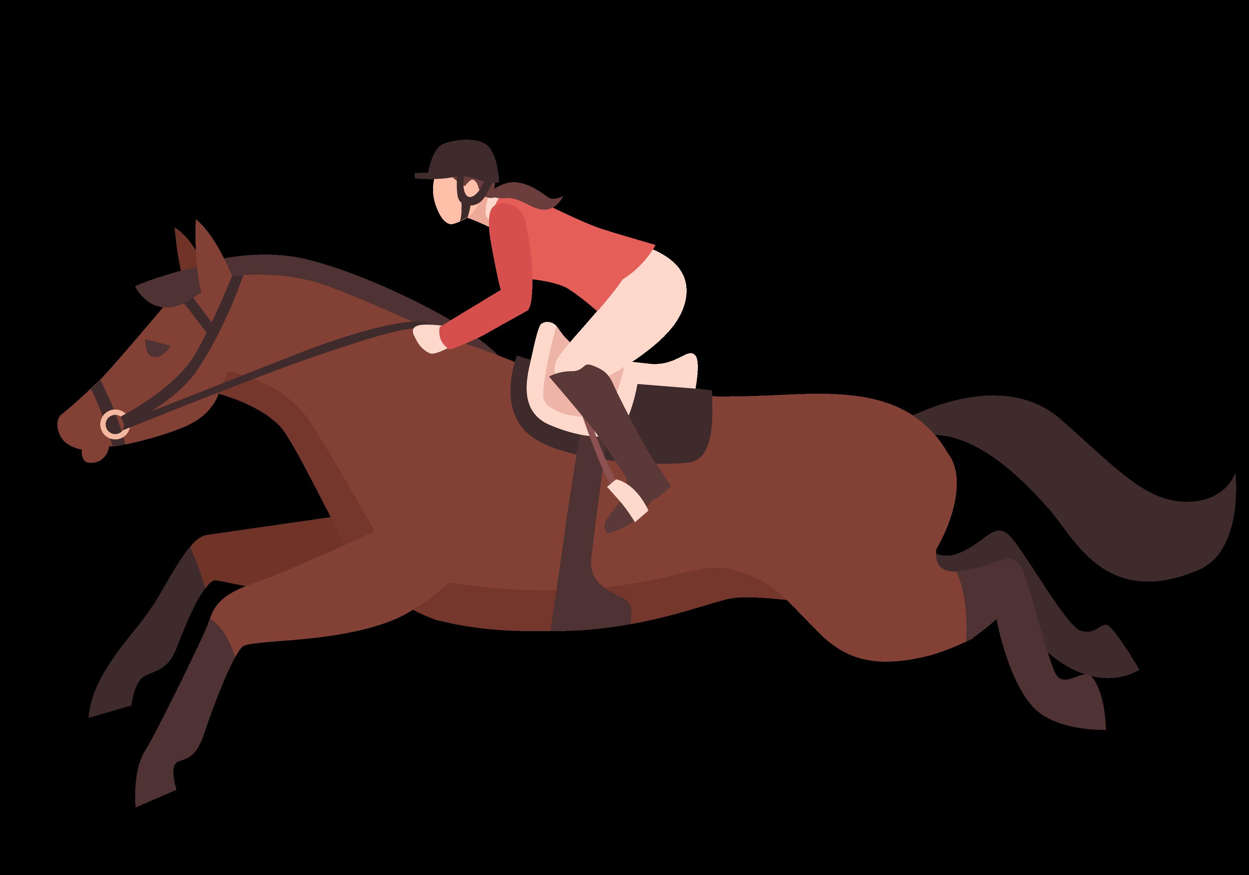 Illustration d'un cavalier polyvalent