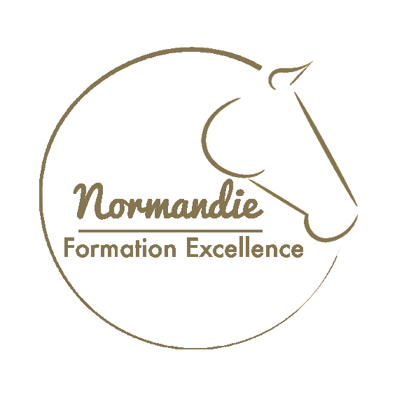 Logo du label normandie formation excellence