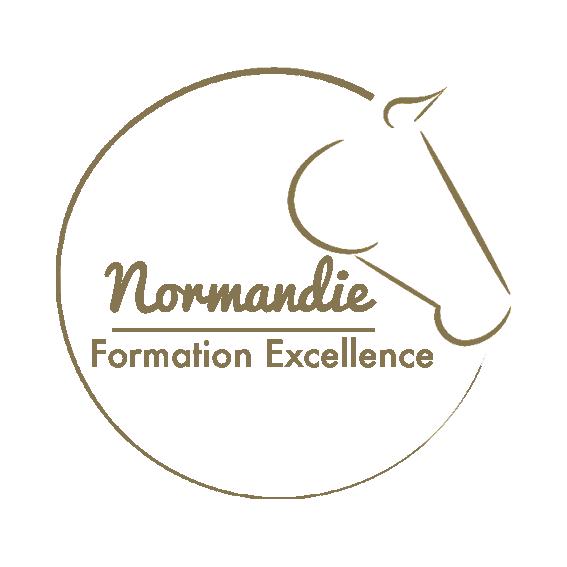 Logo du label normandie formation excellence